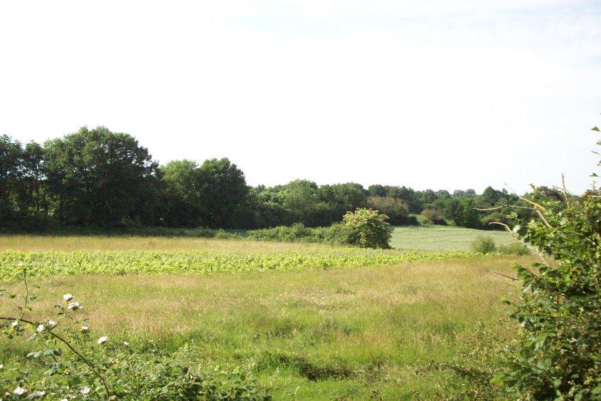 Etude des parcelles agricoles à CHANTONNAY dans le cadre d'un dossier Loi sur l'Eau