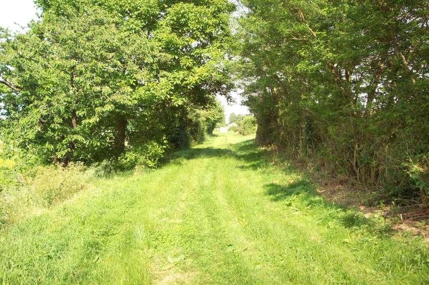 Etude d'un chemin creux à CHANTONNAY dans le cadre d'un dossier Loi sur l'Eau
